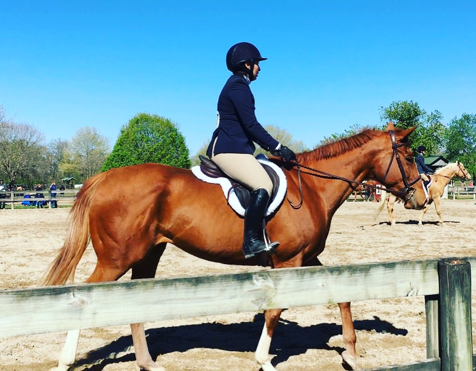 Weekend wrap up ups and downs equestrian at hart for Where can i go horseback riding near me